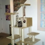 Armarkat Cat tree Furniture Condo, Height -70-Inch to 75-Inch reviews picture (10)