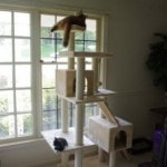 Armarkat Cat tree Furniture Condo, Height -70-Inch to 75-Inch reviews picture (3)