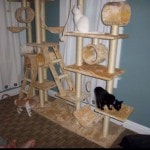 Go Pet Club Cat Tree Condo Furniture reviews picture (6)