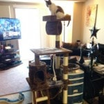 Go Pet Club Cat Tree Furniture 62 reviews pictures (4)