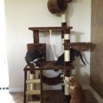 Go Pet Club Cat Tree Furniture 62 reviews pictures (6)