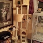 Go Pet Club Huge Cat Tree reviews picture (3)