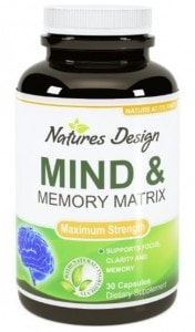 Mind and Memory Matrix