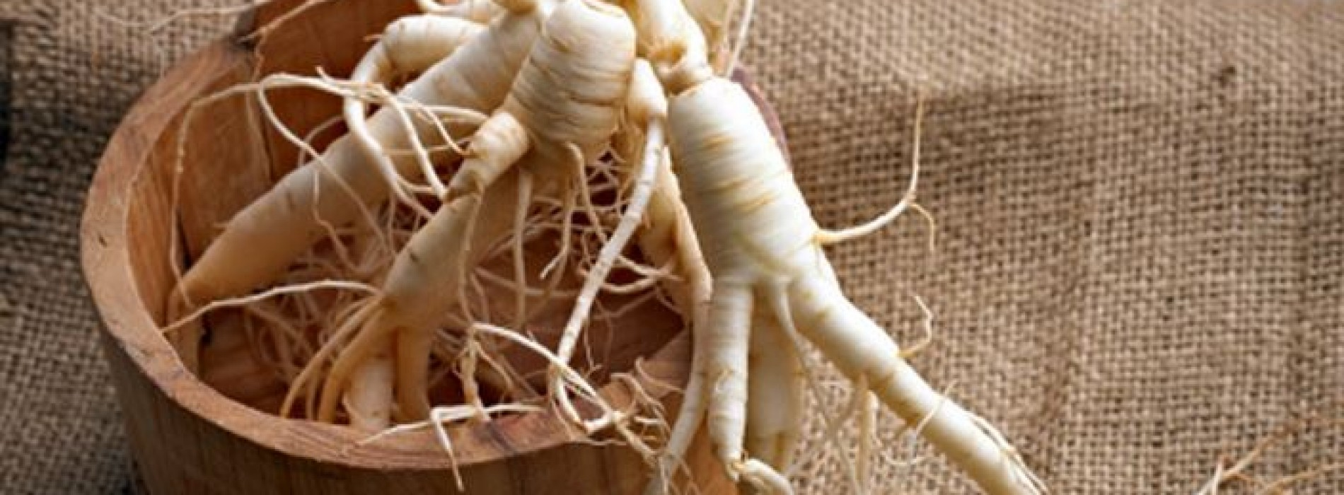 Overall health and fitness improvement with the Siberian ginseng