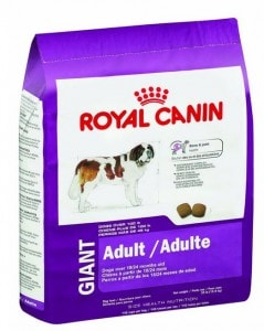 Royal Canin Adult Dry Dog Food Great Dane
